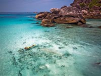 Similan Islands: beautiful beaches and world class diving